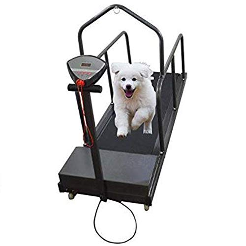 QNMM Dog Treadmill Pet Exercise Equipment for Canine Running Pet Treadmill Animal Treadmill Dog Supplies Puppy Treadmill